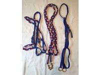 Endurance/Combination Bridle, fits Cob or Arab. Blue, Red and White. Good condition.