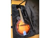 Mandolin F scroll 8 string