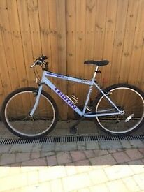 Townsend Triton Adult Mountain Bike