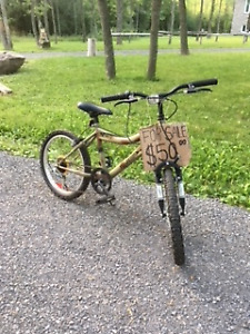 Various sized bicycles for sale - Starting price: $20