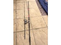 Fishing rod and reel Cheap Exterminator Pike rod with a Reel