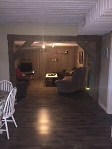 Spacious one-bedroom apartment for rent-available Nov. 1