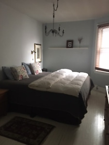 A beautifully furnished 1200 sq/ft one bedroom walk up apartment