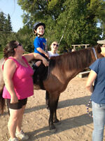 Volunteers Needed for Therapeutic Riding Centre in South Bruce