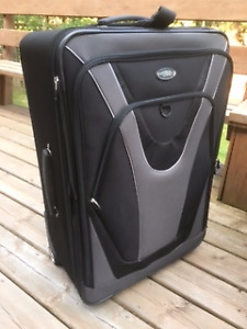 Skyway 2 Wheel Expandable Upright Luggage
