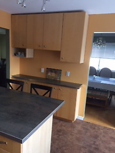 Main Level of detached house for rent