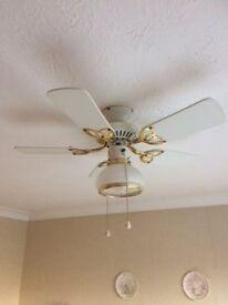 Ceiling light/fan