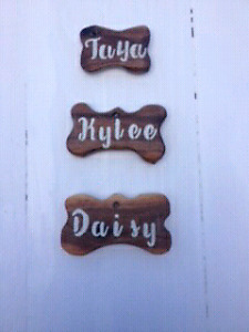 Hand-carved Doggie ID Tags & More