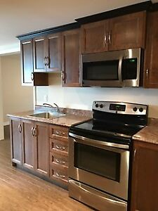 Newly renovated apartment with parking !!