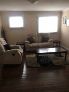 Furnished Fully Renovated 1 Bedroom Available Immediately St. John's Newfoundland image 5