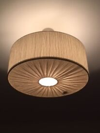 Light shade and fitting