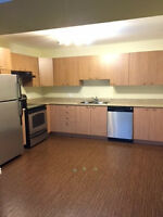 COMPLETELY RENOVATED FROM TOP TO BOTTOM NEAR CITY HOSPITAL