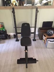 Gold's Gym Workout Bench