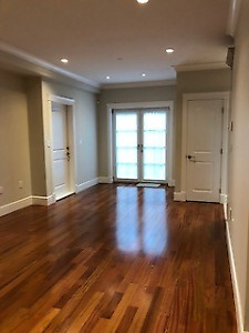 Brand new, bright, 1 bedroom unfurnished basement suite. First o