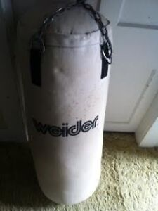 Weider Heavy Bag with ceiling mount