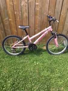 Norco Girls Mountain Bike