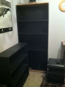 Bookcase Maroubra Eastern Suburbs Preview