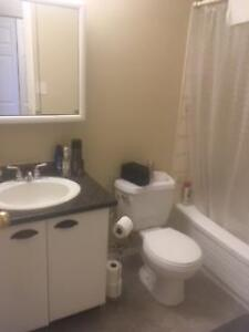 2 bedroom plus den, two bathroom apartment Avail June or July1st