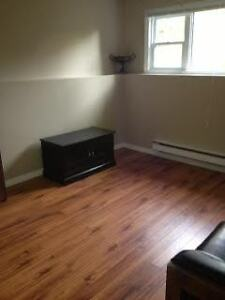 One Bedroom Furnished Apartment - MARYSTOWN