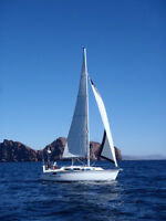 Sailboat - Best Deal on the Market