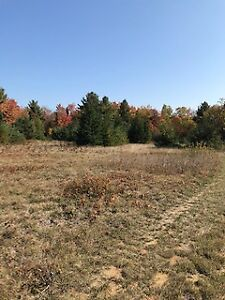 70 acres HUNT CAMP.. KENNEL.. NURSERY .GREEN HOUSE LOTS OF USES