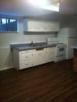Large 2 BDR Suite in Maplewood