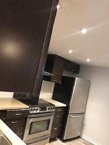 Renovated One Bedroom/One bath Basement Apartment