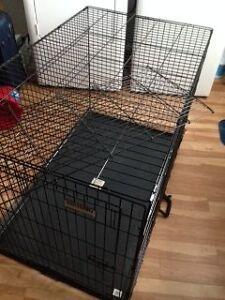 cage à chien - grande RÉSERVÉE POUR L'INSTANT