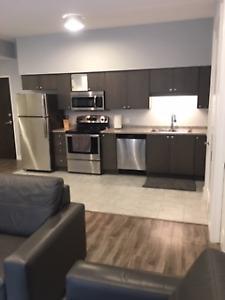 2 Bedroom 2 Bathroom Furnished Apartment for Rent