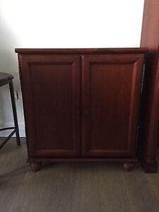 Lower Wood Door Bookcase