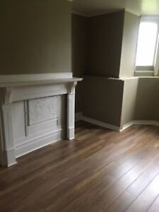 Renovated one bedroom Broad and Wentworth