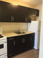 NEWLY RENOVATED - BACHELOR APARTMENT - $700 - DOWNTOWN