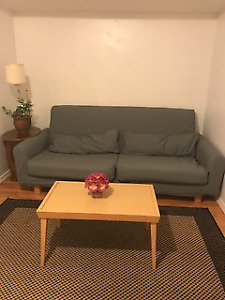 Great Location!  Quiet and Clean 1Bdrm Furnished Basement Apt.