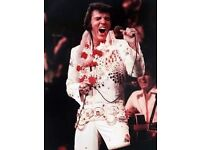ELVIS PARTY DECORATIONS WANTED