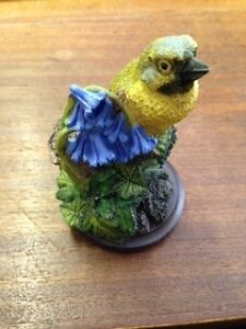 The Country Bird Collection - Yellowhammer / Greenfinch / Cuckoo & MORE 7 Breeds