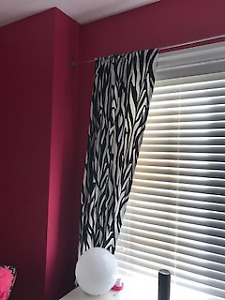 Zebra Curtains