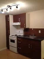 Renovated 1-bedroom Basement Suite Desirable Southside $985