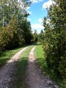Picturesque 50 acre Property in Southgate Township