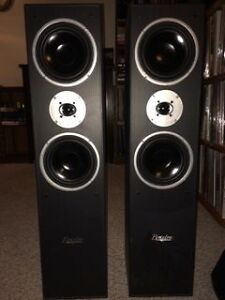 Braxton 2 Way Tower Speakers Kitchener / Waterloo Kitchener Area image 1
