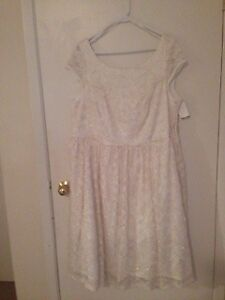 Beautful Lace with Gold Accents Dress New