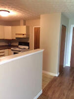 NEWLY RENOVATED 2 BEDROOM 42 SOMERSET ST