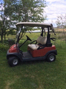 2008 Predator Ridge Club Car Golf Cart