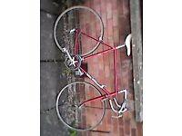 Vintage road bike (Campag components)