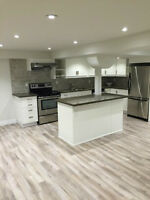 Spacious Bright and very clean, newly reno'd 2 bed basement  apt