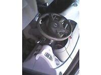 Nissan almera tino for sale 1 tear mot
