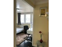 PERFECT FOR SUMMER INTERNSHIP 2 DOUBLE BEDS, 2 BATHS, CENTRAL LONDON