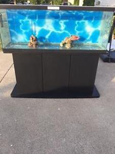 55 Gallon Fish Tank with Black stand and some accessories