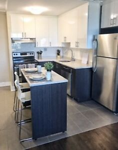 Plateau Mt Royal- Renové 3½  Disponible Maintenant!