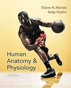 Anatomy and Physiology textbook with lab manual
