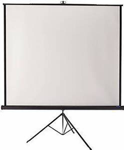 "DA-LITE 50"" x 50"" PROJECTION SCREEN - $50"